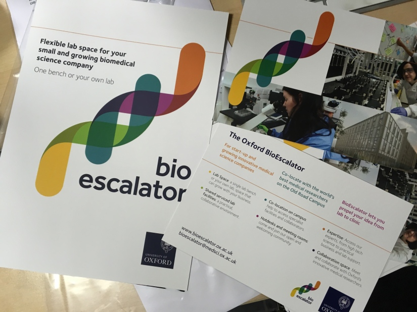 Brand design for BioEscalator